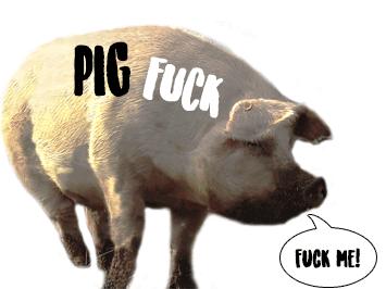 Porn videos pig